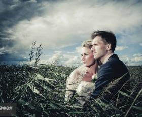 bryllupsfotograf pris nyborg
