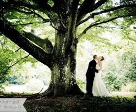 pris på fotograf til bryllup