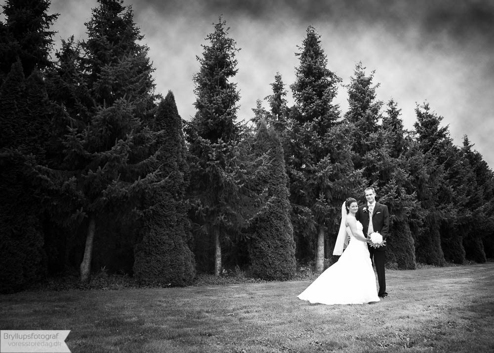 Brudepar Johnny og Katrine