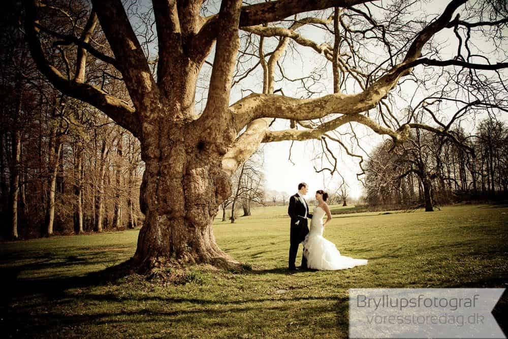 kokkedal slot bryllupsfoto-274