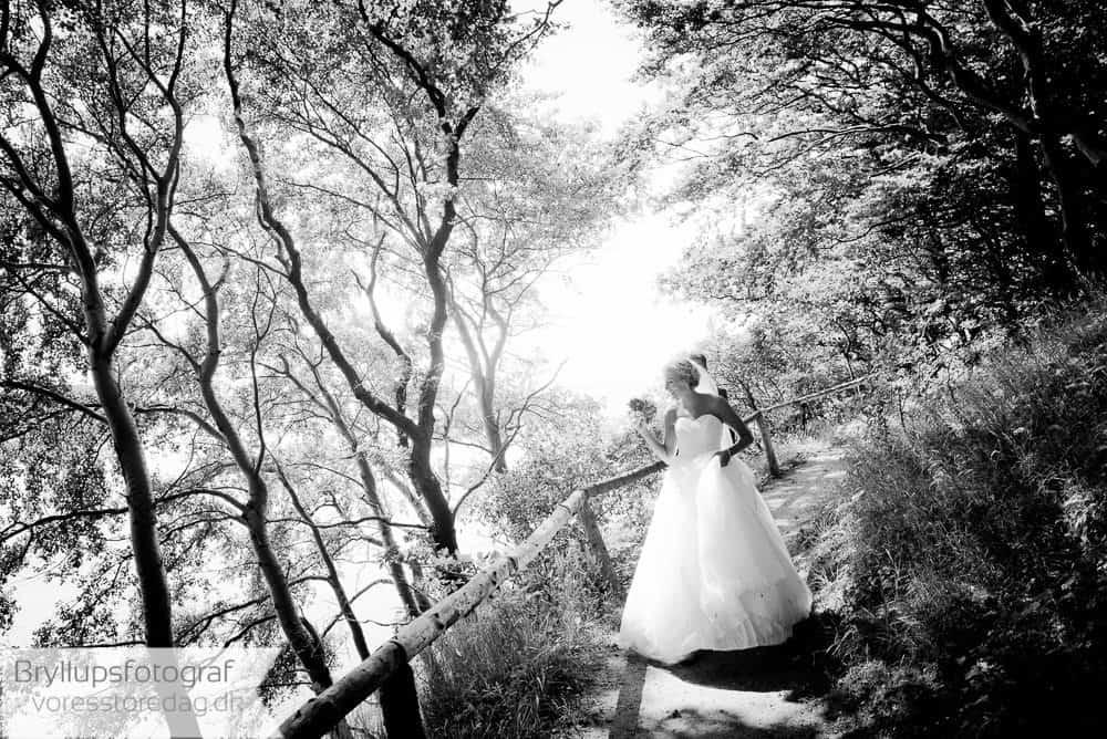 bryllupsfoto-hindsgavl_slot242