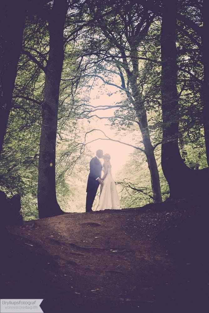 viborg bryllupper