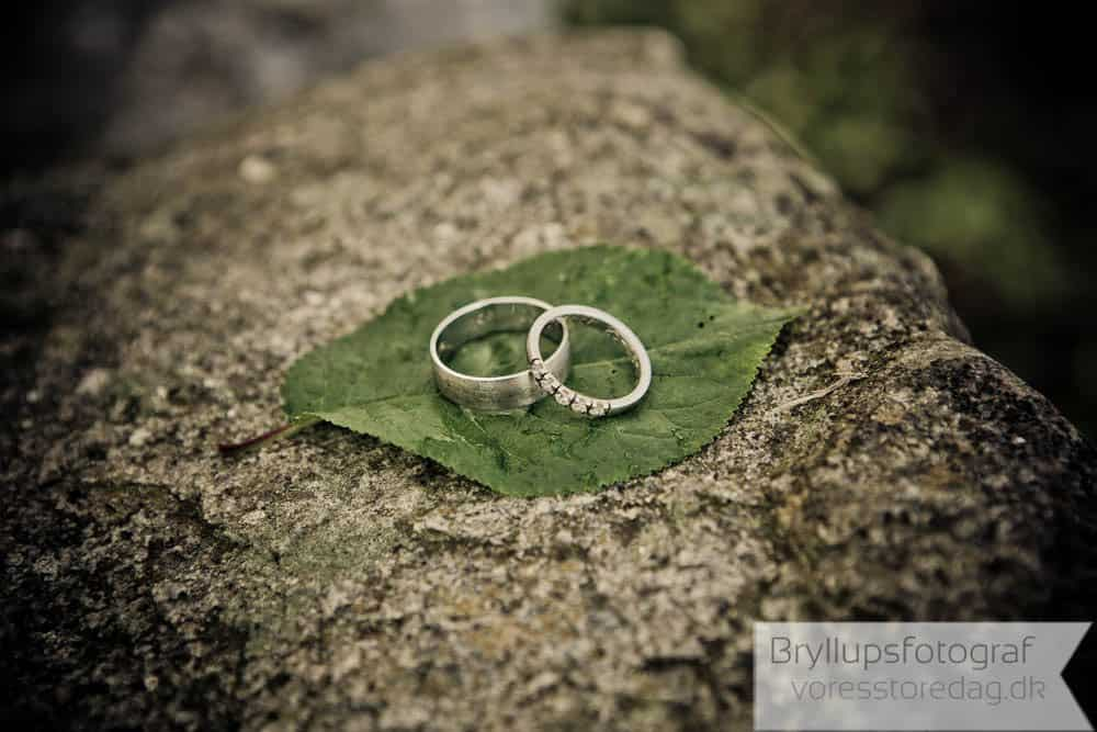 mariagerfjord