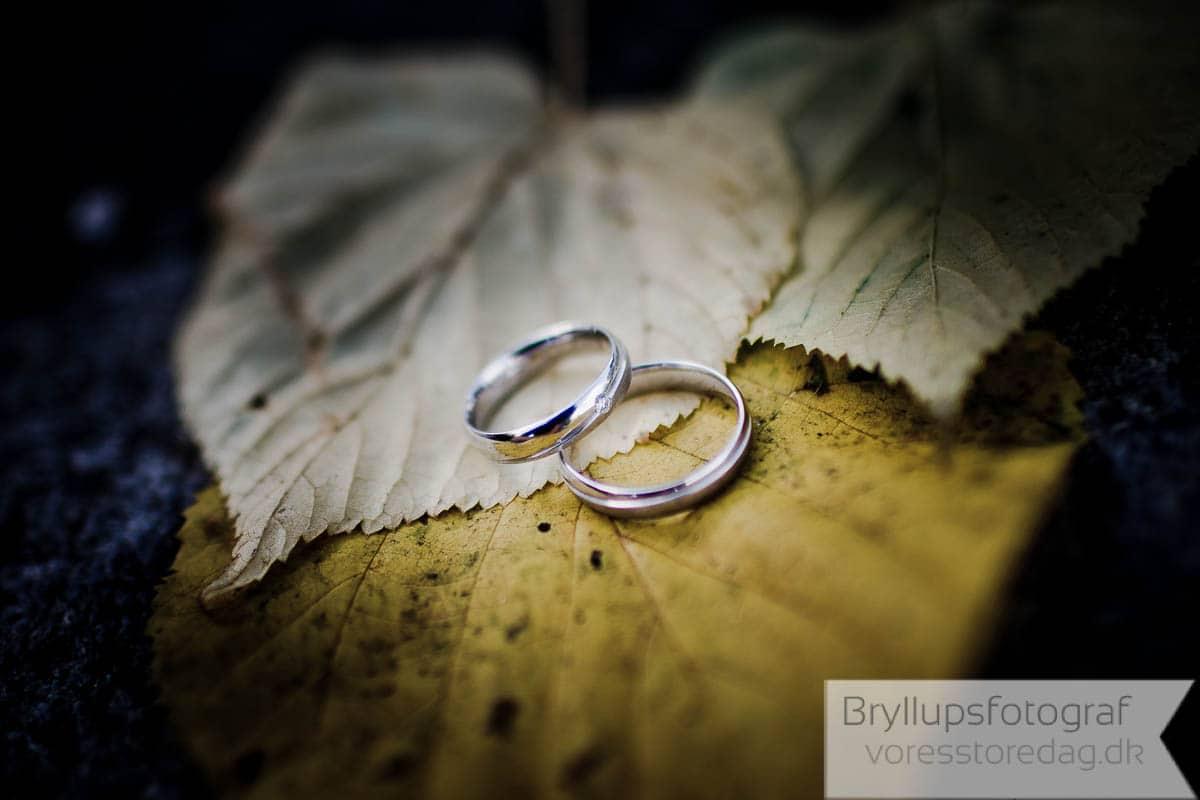 Scandic Bygholm Park Bryllup 5