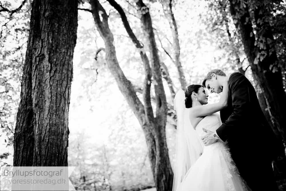 Bryllupsfotograf Hillerød
