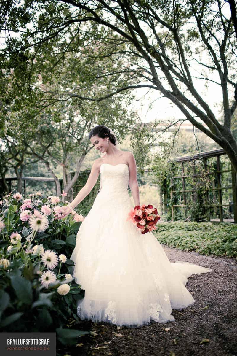 billig bryllupsfotograf langeland