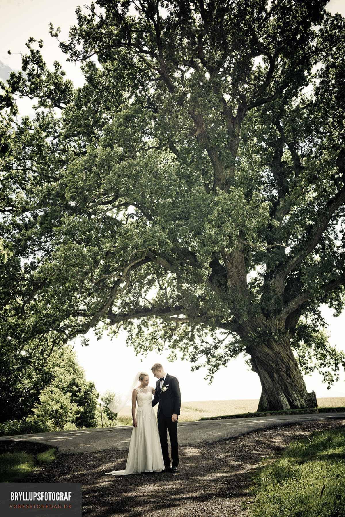 Bryllup Djursland