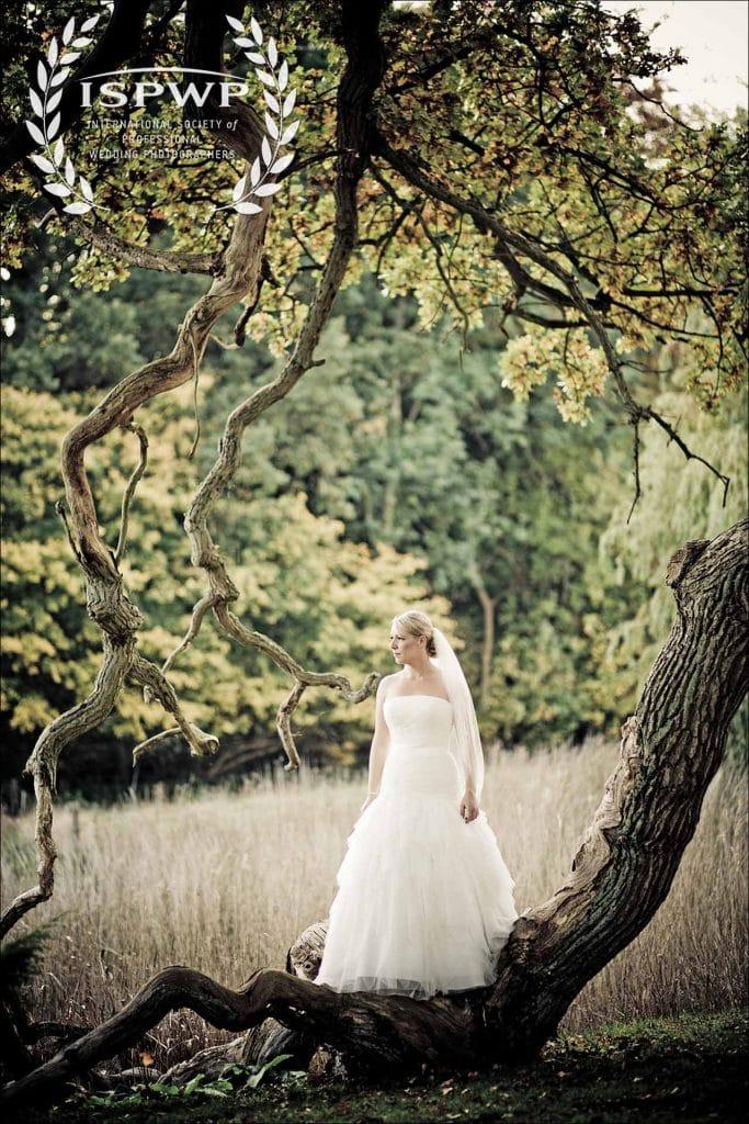 et eventyrligt bryllupsfoto