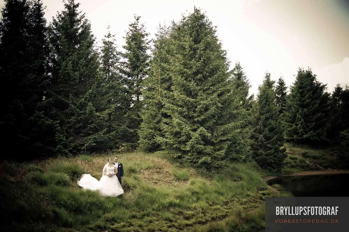 bryllupsfotograf Vejen