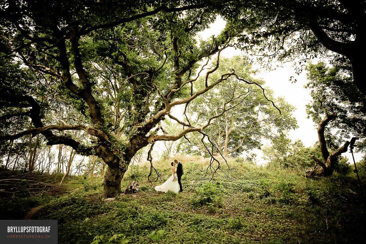 LEDREBORG SLOT bryllup