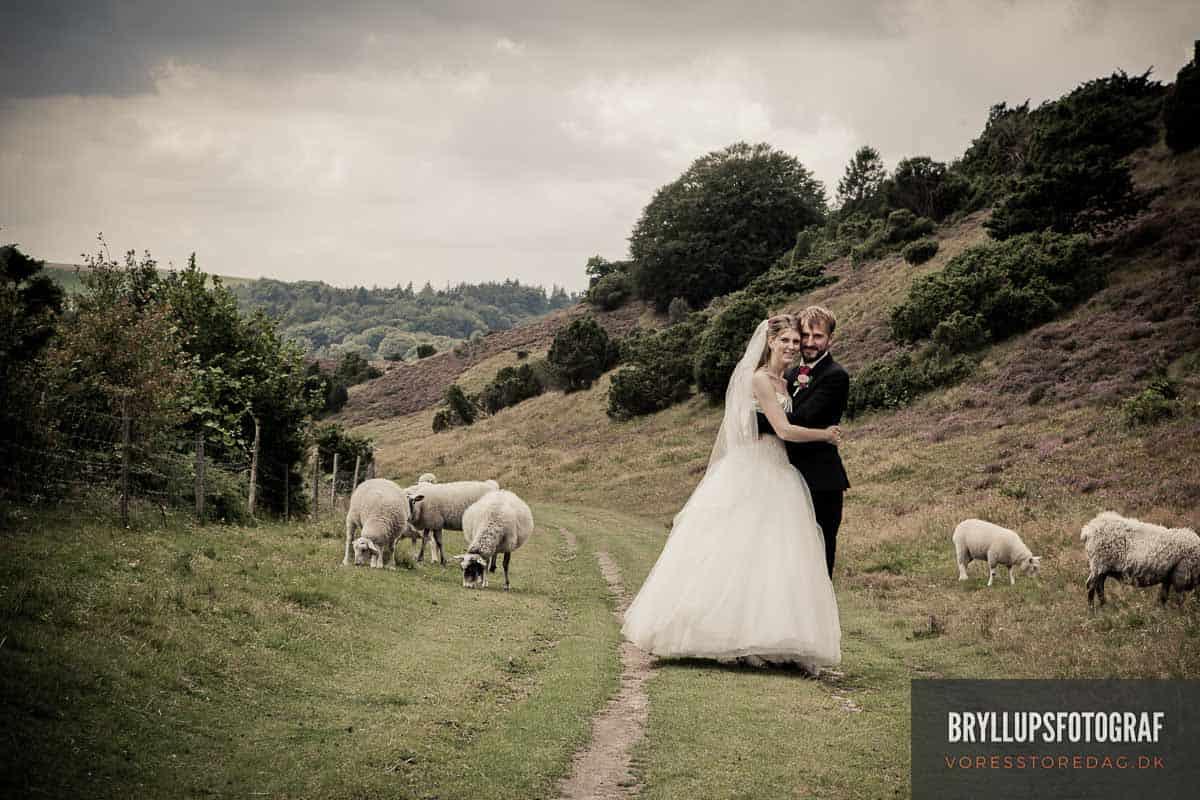 bryllupsfotograf Værløse