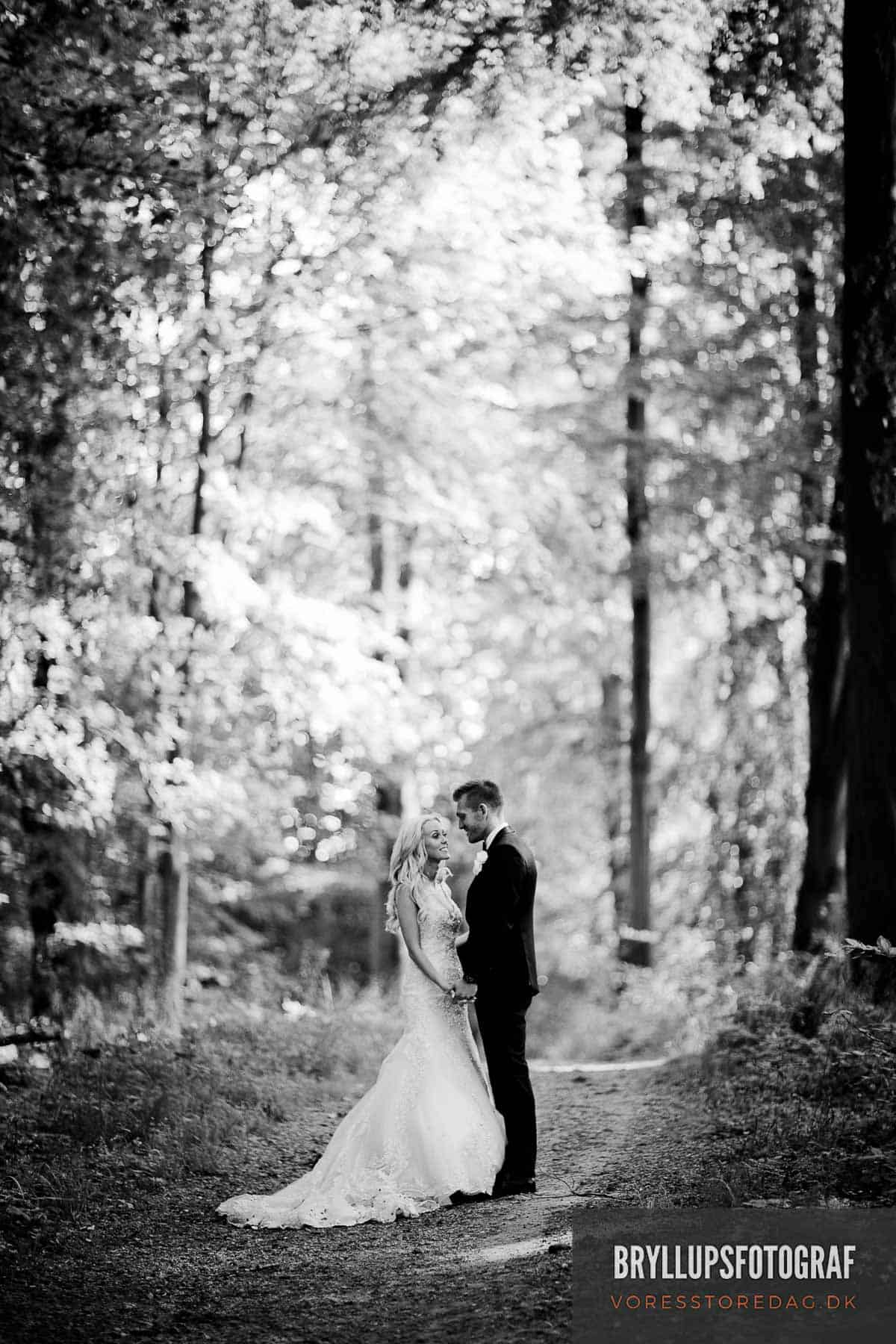bryllupsfoto kokkedal slot