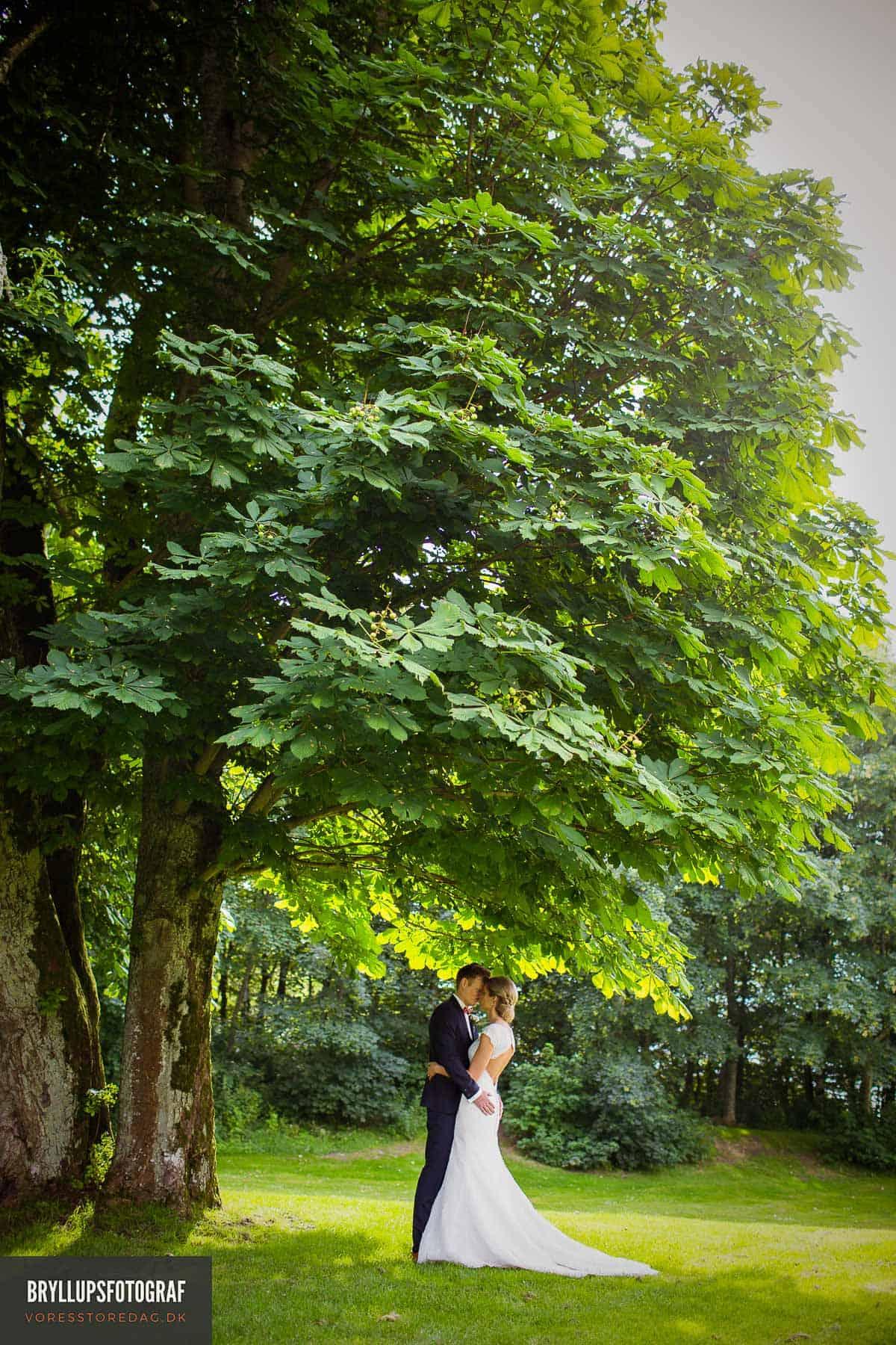 bryllup i skoven Jylland