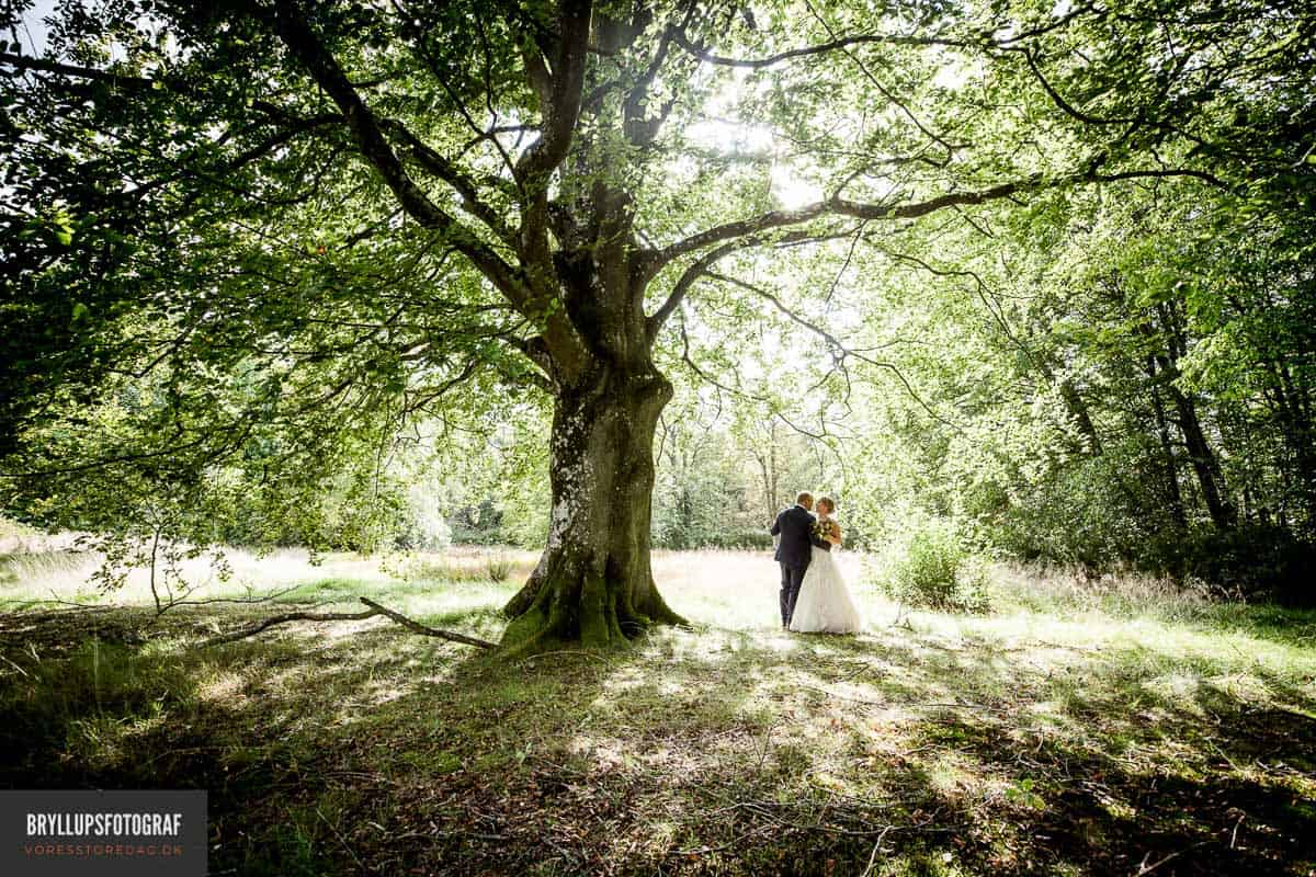fotografer Svanninge Bakker bryllupsfotos