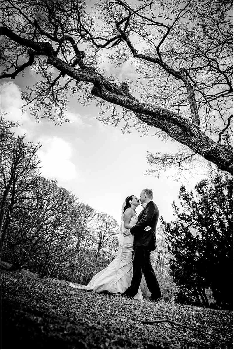 Forlovelse og bryllup i skoven