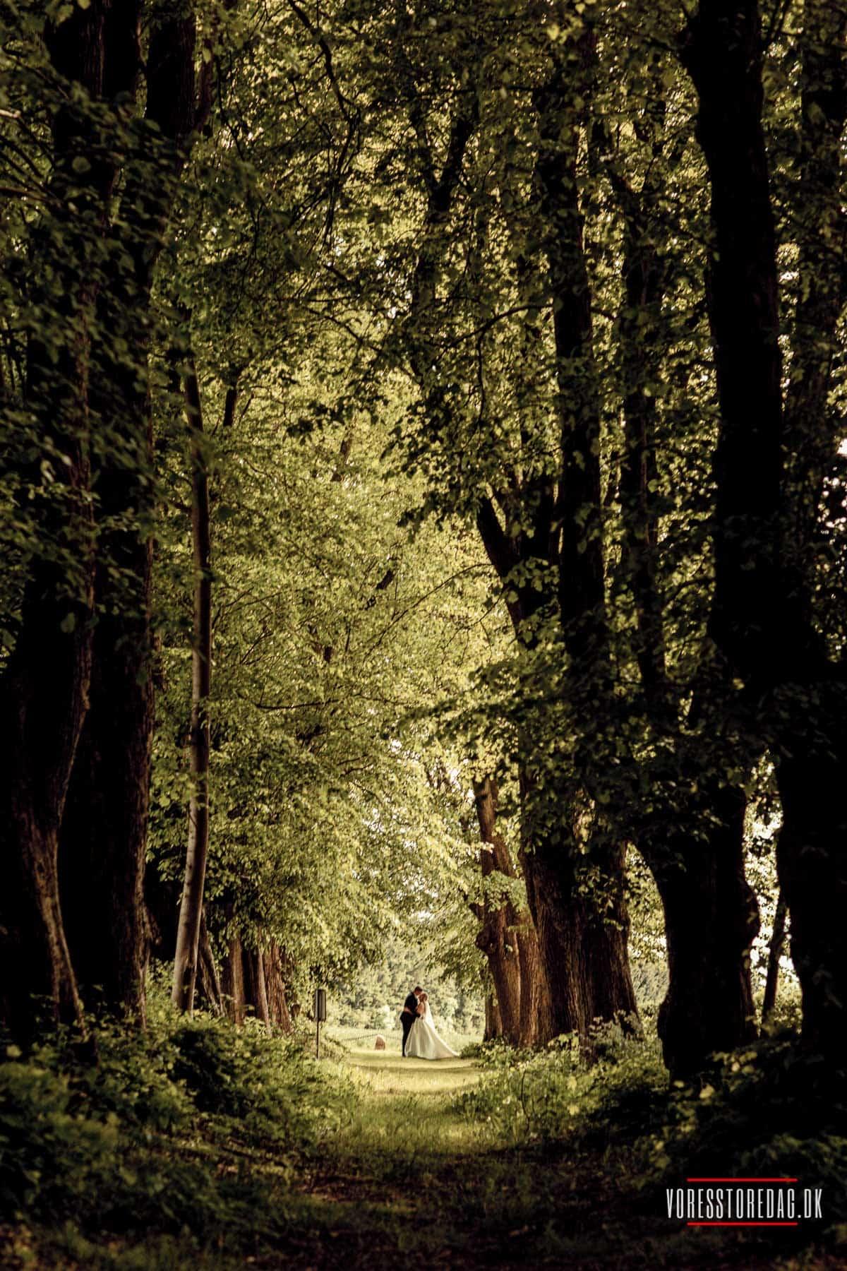 et romantisk og personligt bryllup på toppen af Danmark omgivet af skov