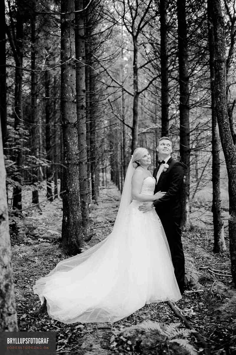 Smukt bryllup i skoven