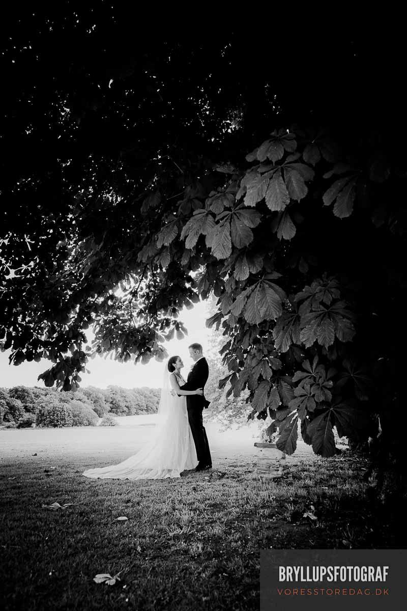 bryllup i skoven fyn
