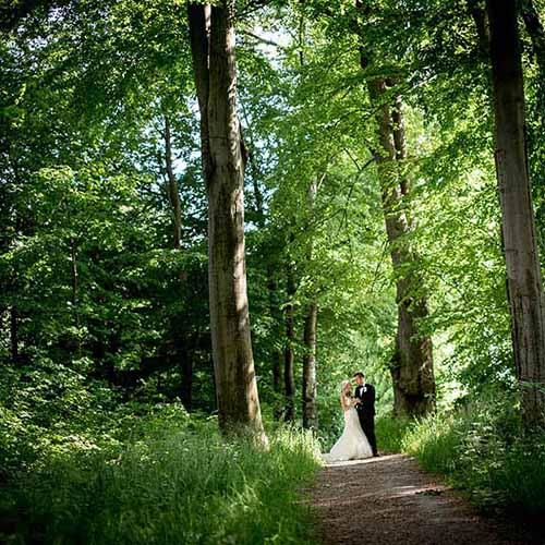brudebillede i skov